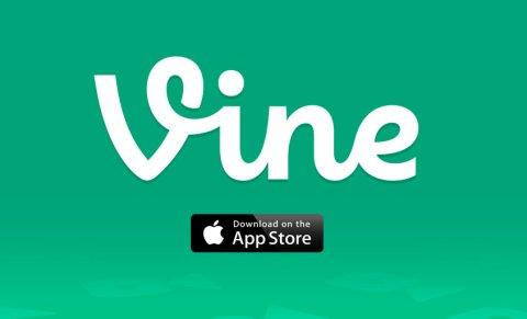VineCrop